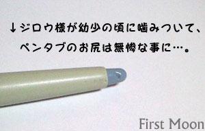20081107_3.jpg