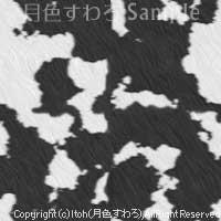 20081220_8.jpg