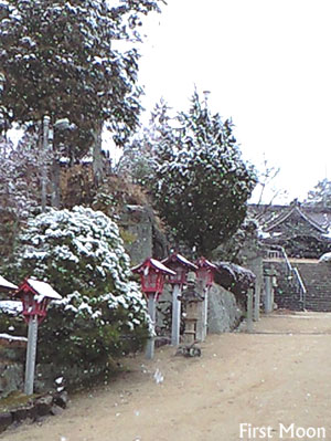 20090303_3.jpg